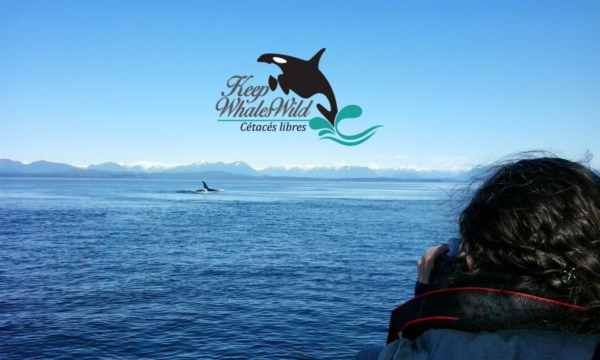 Keep Whales Wild - Cétacés Libres